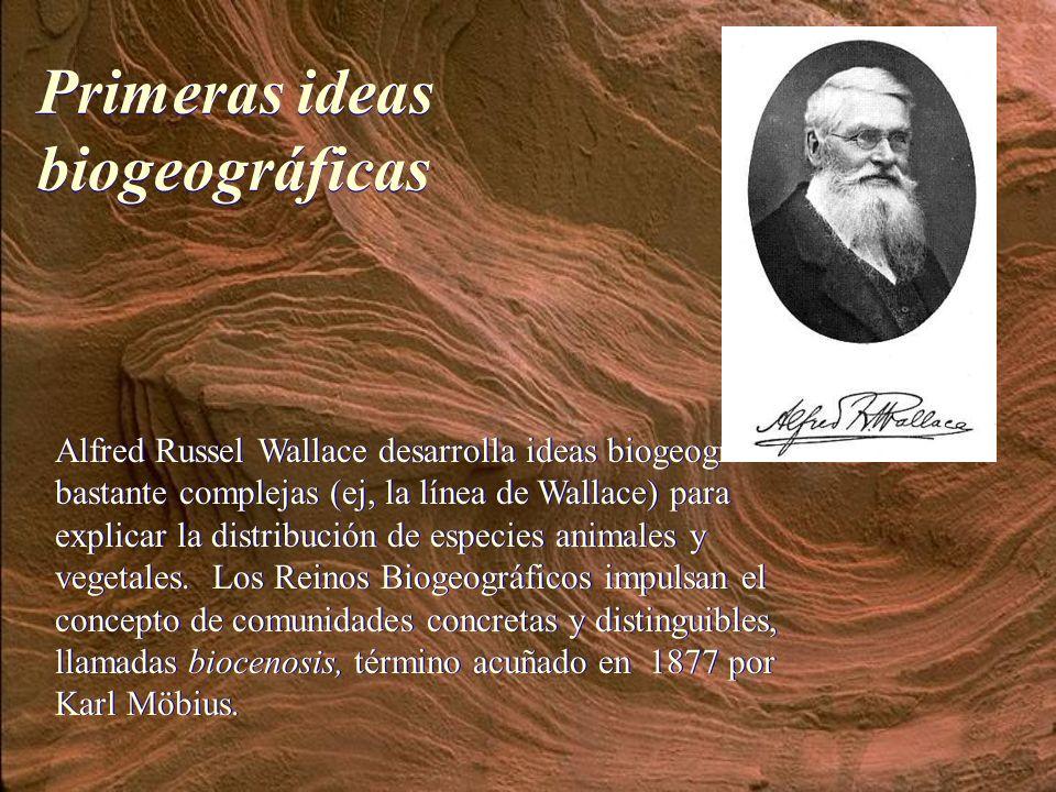 Primeras ideas biogeográficas
