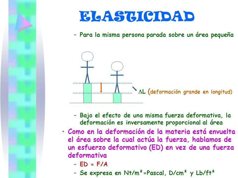 ELASTICIDAD DL (deformación grande en longitud)