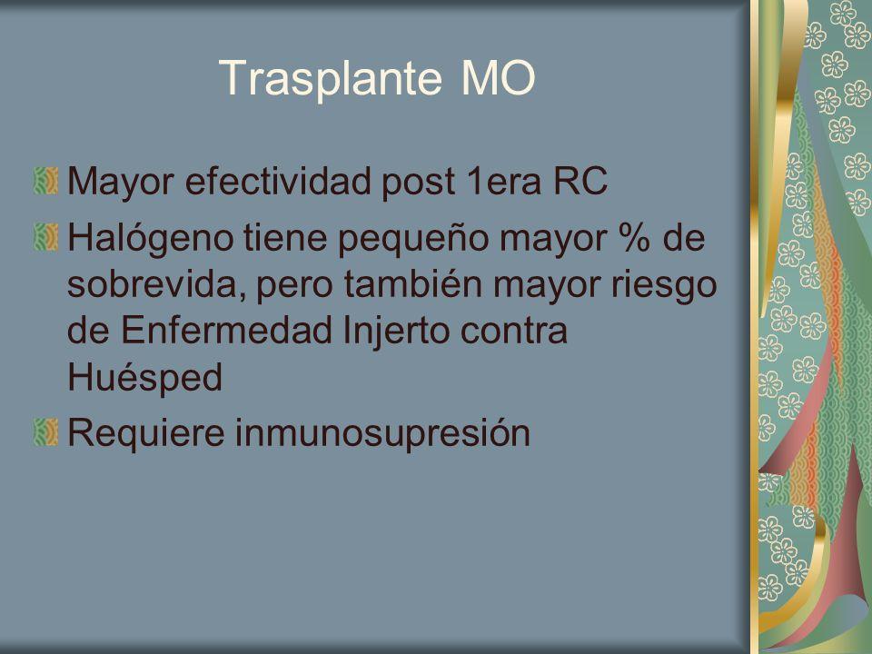 Trasplante MO Mayor efectividad post 1era RC