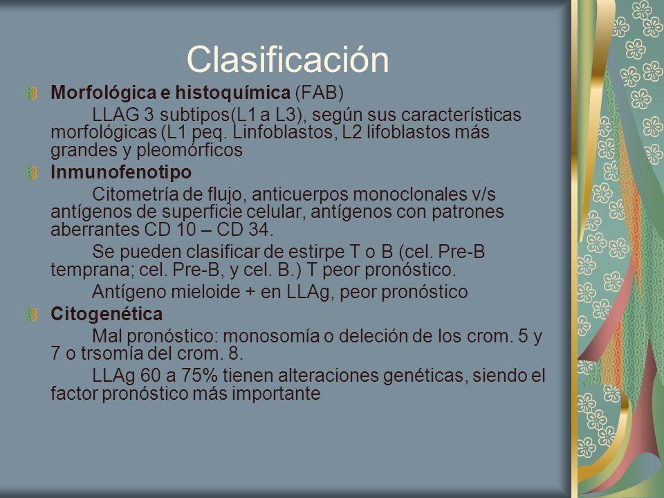 Clasificación Morfológica e histoquímica (FAB)
