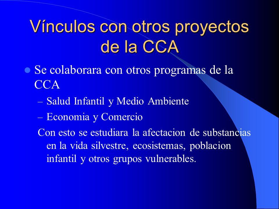 Vínculos con otros proyectos de la CCA