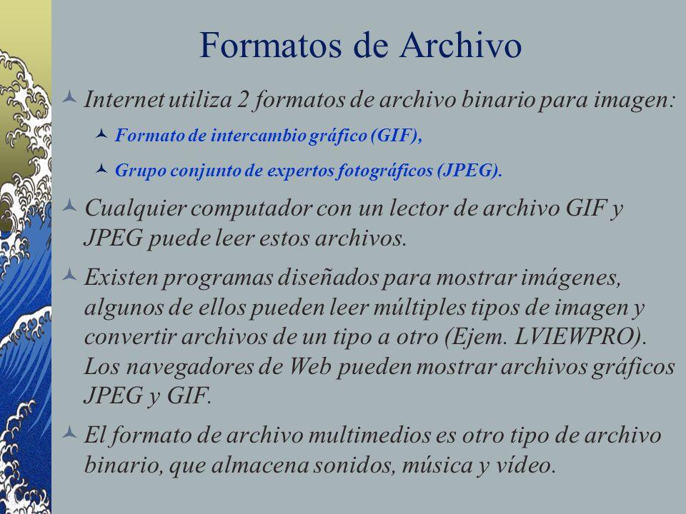 Formatos de Archivo Internet utiliza 2 formatos de archivo binario para imagen: Formato de intercambio gráfico (GIF),