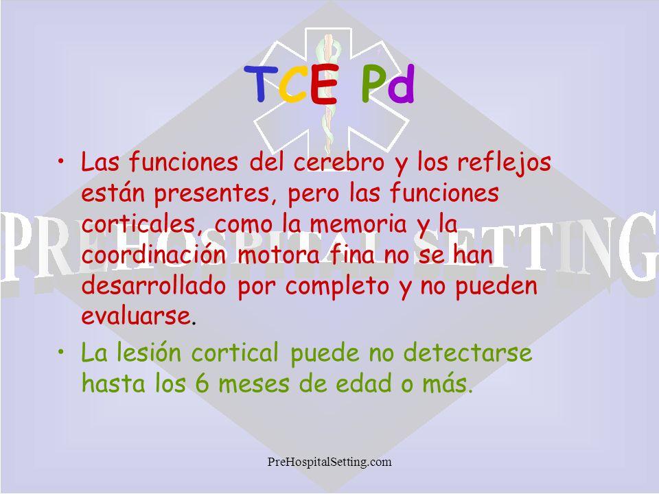 TCE Pd