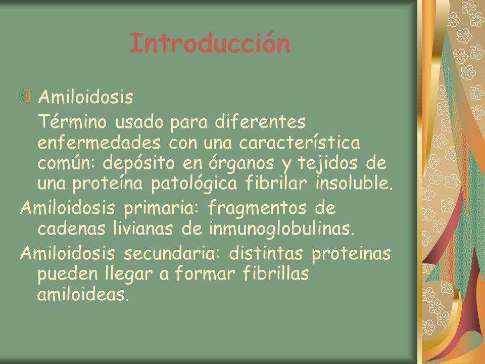 Introducción Amiloidosis