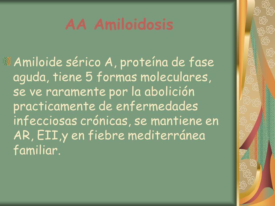 AA Amiloidosis