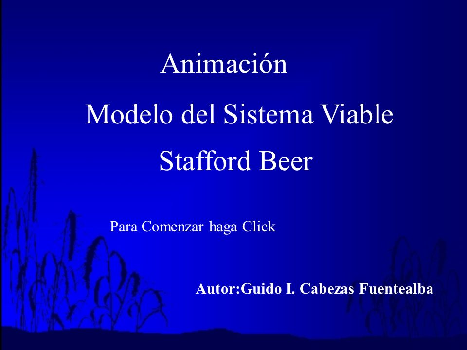 Modelo del Sistema Viable