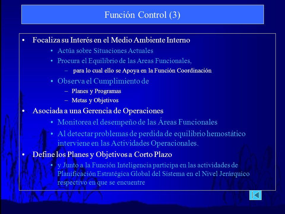 Función Control (3) Focaliza su Interés en el Medio Ambiente Interno