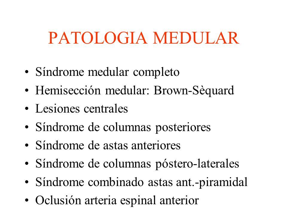PATOLOGIA MEDULAR Síndrome medular completo