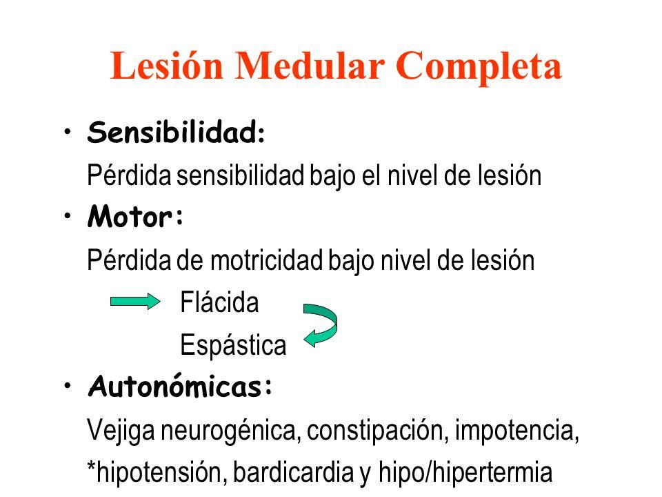 Lesión Medular Completa