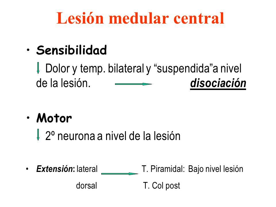 Lesión medular central
