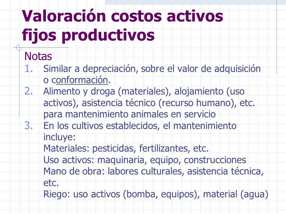 Valoración costos activos fijos productivos