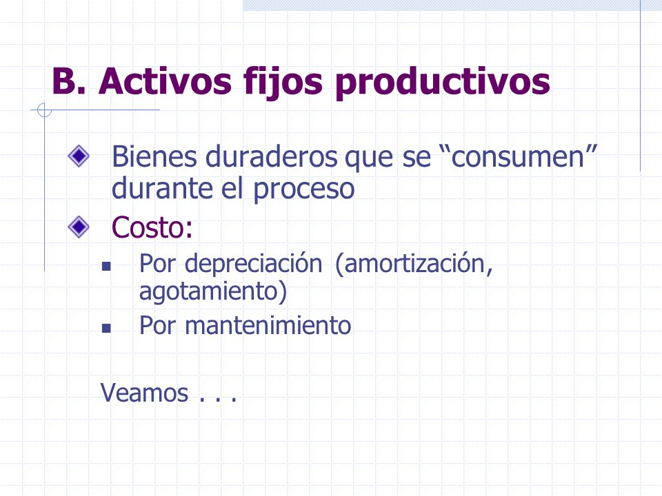 B. Activos fijos productivos