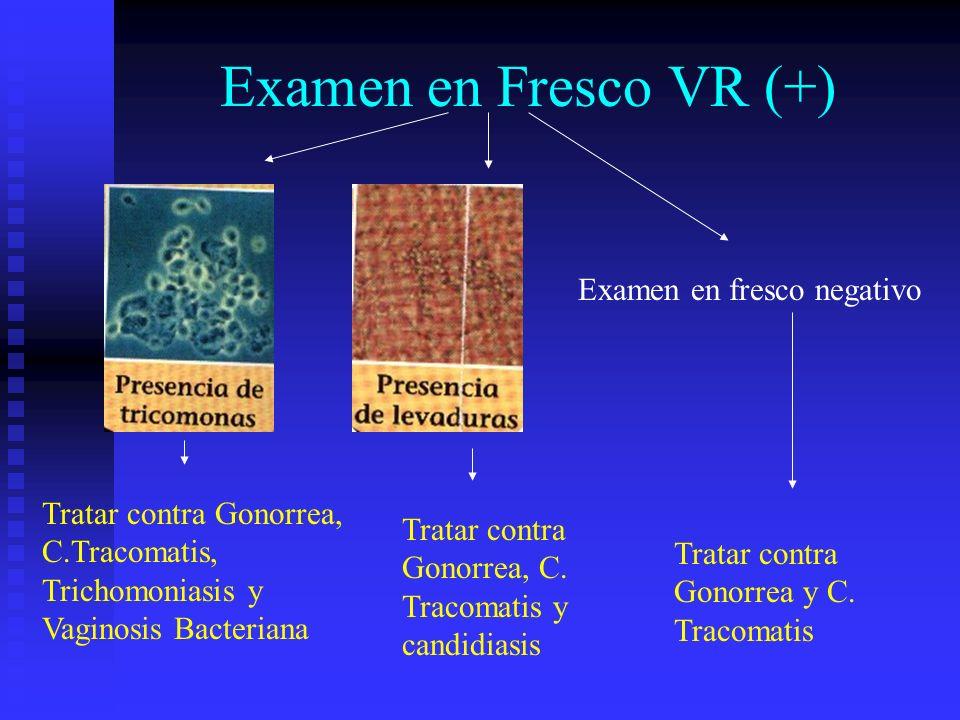 Examen en Fresco VR (+) Examen en fresco negativo