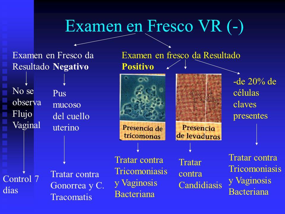Examen en Fresco VR (-) Examen en Fresco da Resultado Negativo