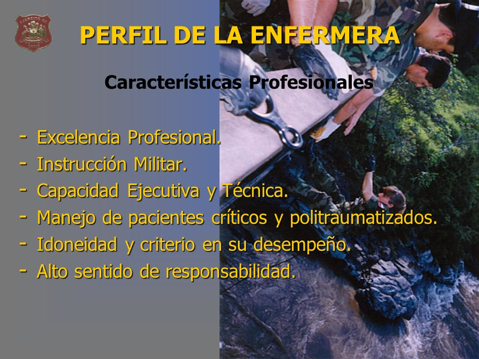 PERFIL DE LA ENFERMERA Características Profesionales