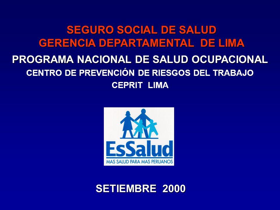 IPSSipss PROGRAMA NACIONAL DE SALUD OCUPACIONAL SETIEMBRE 2000