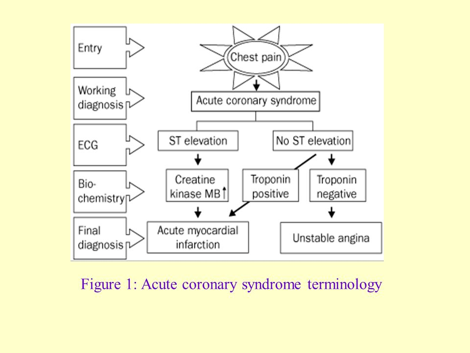 Figure 1: Acute coronary syndrome terminology