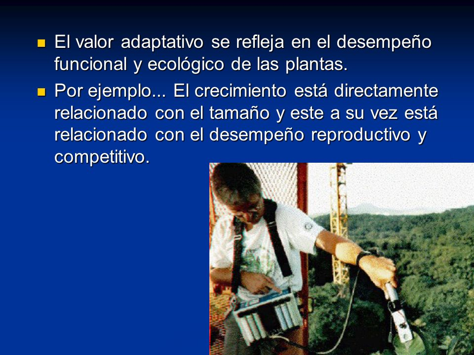 El valor adaptativo se refleja en el desempeño funcional y ecológico de las plantas.