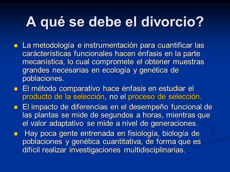 A qué se debe el divorcio