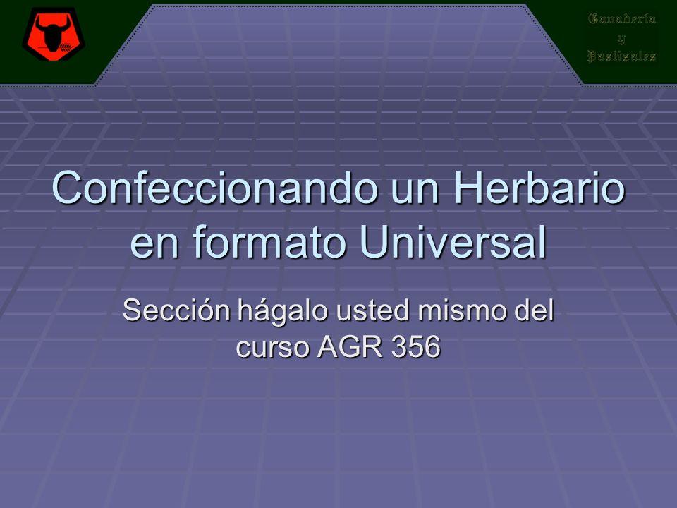 Confeccionando un Herbario en formato Universal