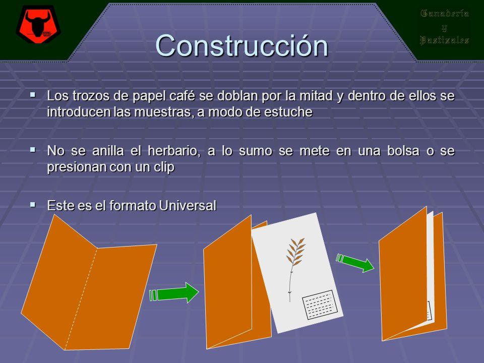 Construcción Los trozos de papel café se doblan por la mitad y dentro de ellos se introducen las muestras, a modo de estuche.