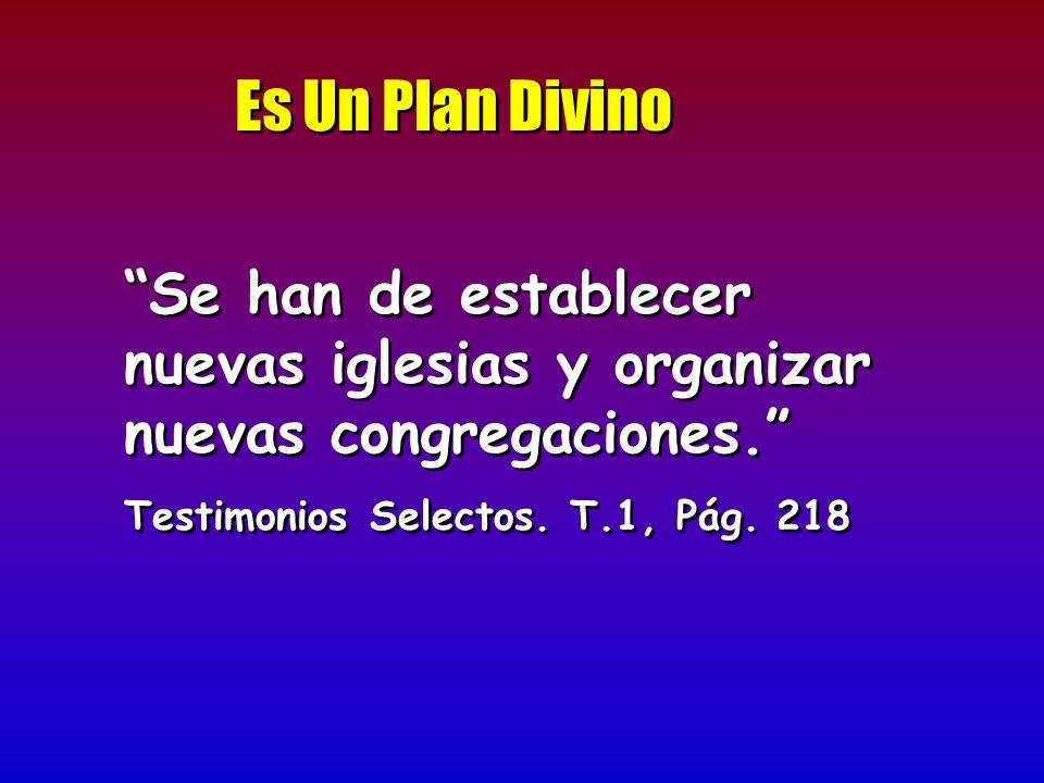 Es Un Plan Divino Se han de establecer nuevas iglesias y organizar nuevas congregaciones. Testimonios Selectos.