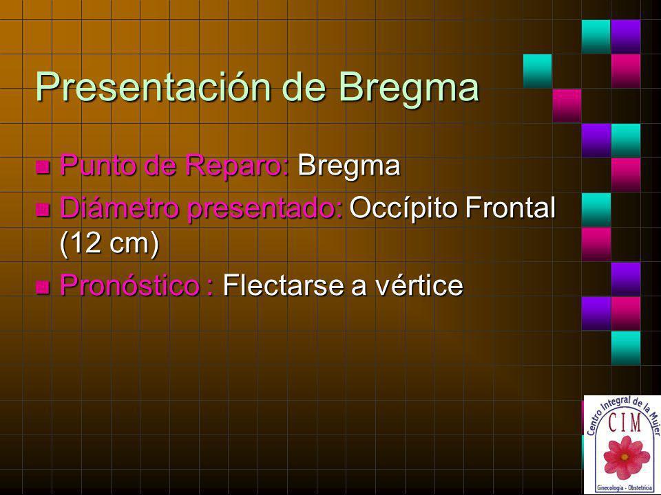 Presentación de Bregma