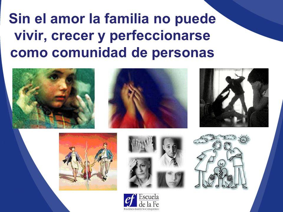 Sin el amor la familia no puede vivir, crecer y perfeccionarse como comunidad de personas
