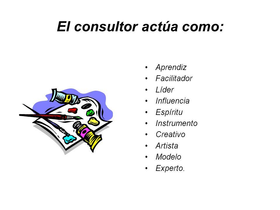 El consultor actúa como: