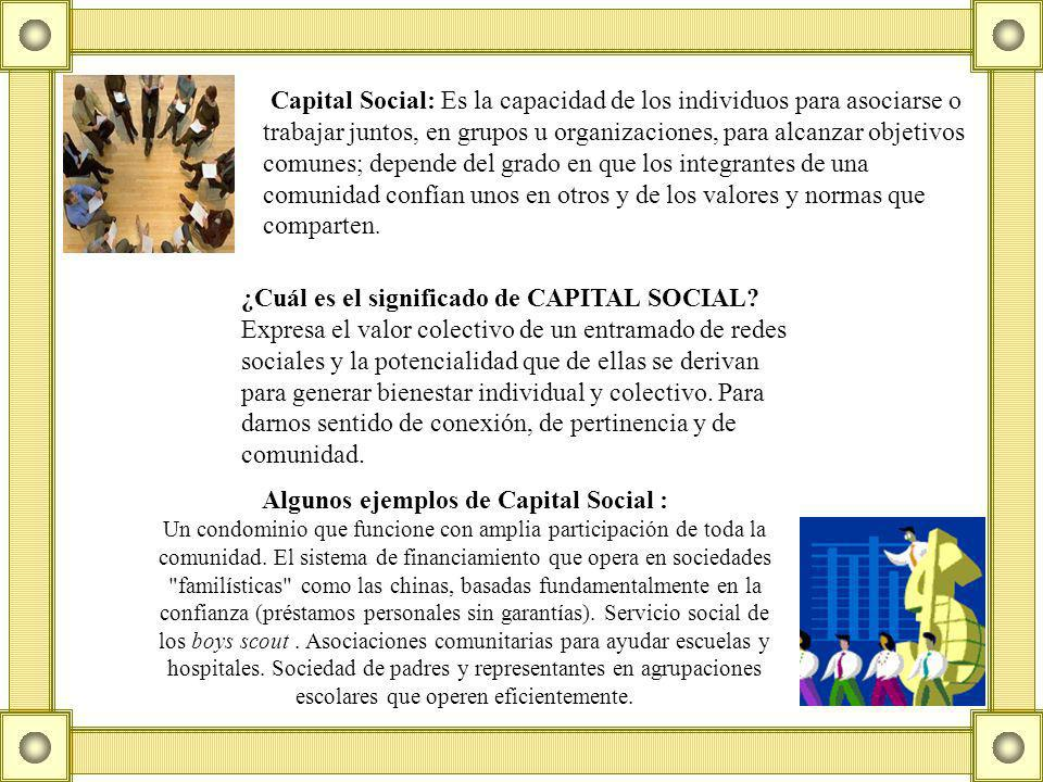 Algunos ejemplos de Capital Social :