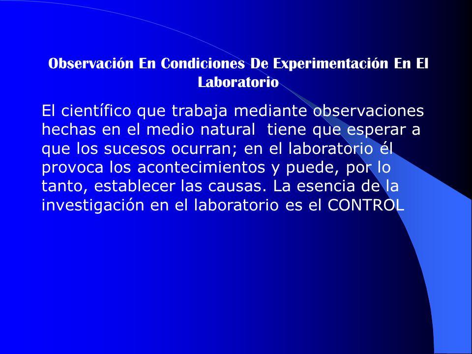 Observación En Condiciones De Experimentación En El Laboratorio