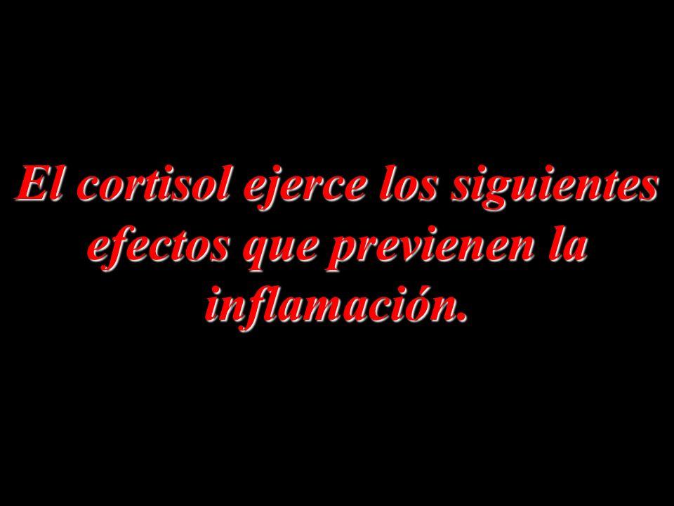 El cortisol ejerce los siguientes efectos que previenen la inflamación.