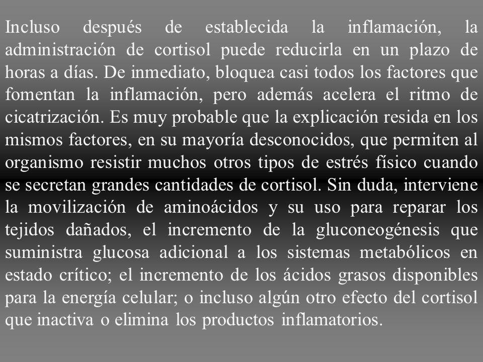 Incluso después de establecida la inflamación, la administración de cortisol puede reducirla en un plazo de horas a días.