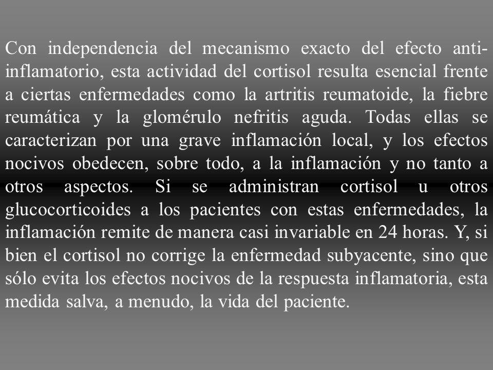 Con independencia del mecanismo exacto del efecto anti-inflamatorio, esta actividad del cortisol resulta esencial frente a ciertas enfermedades como la artritis reumatoide, la fiebre reumática y la glomérulo nefritis aguda.