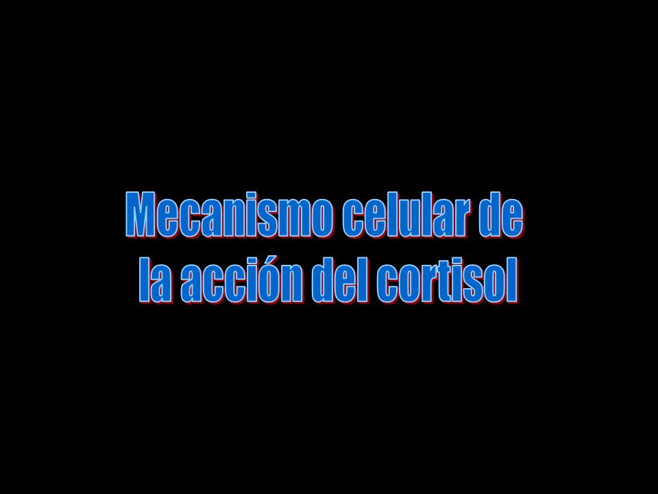 Mecanismo celular de la acción del cortisol