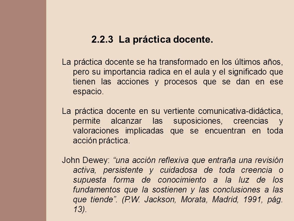 2.2.3 La práctica docente.