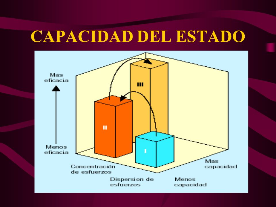 CAPACIDAD DEL ESTADO 19