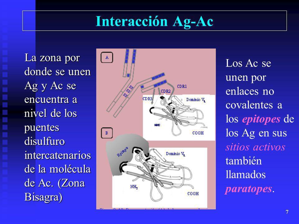 Interacción Ag-Ac