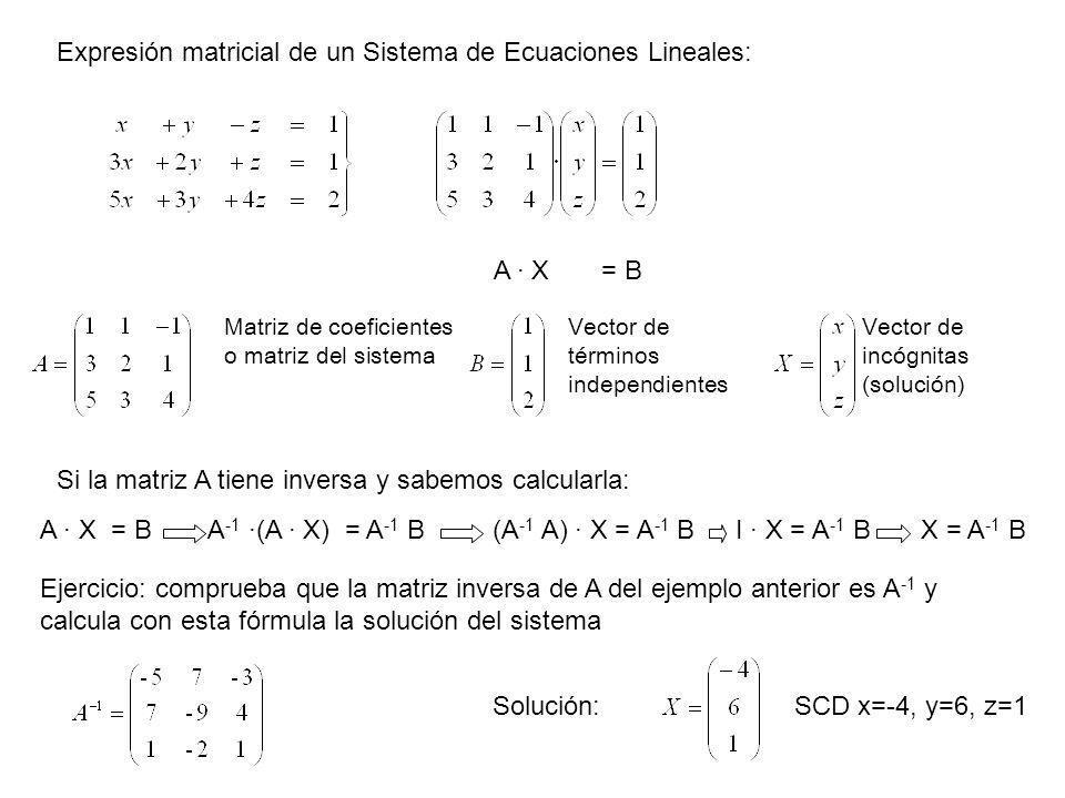 Expresión matricial de un Sistema de Ecuaciones Lineales: