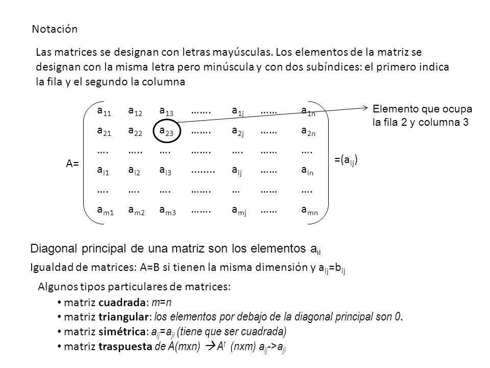 Diagonal principal de una matriz son los elementos aii