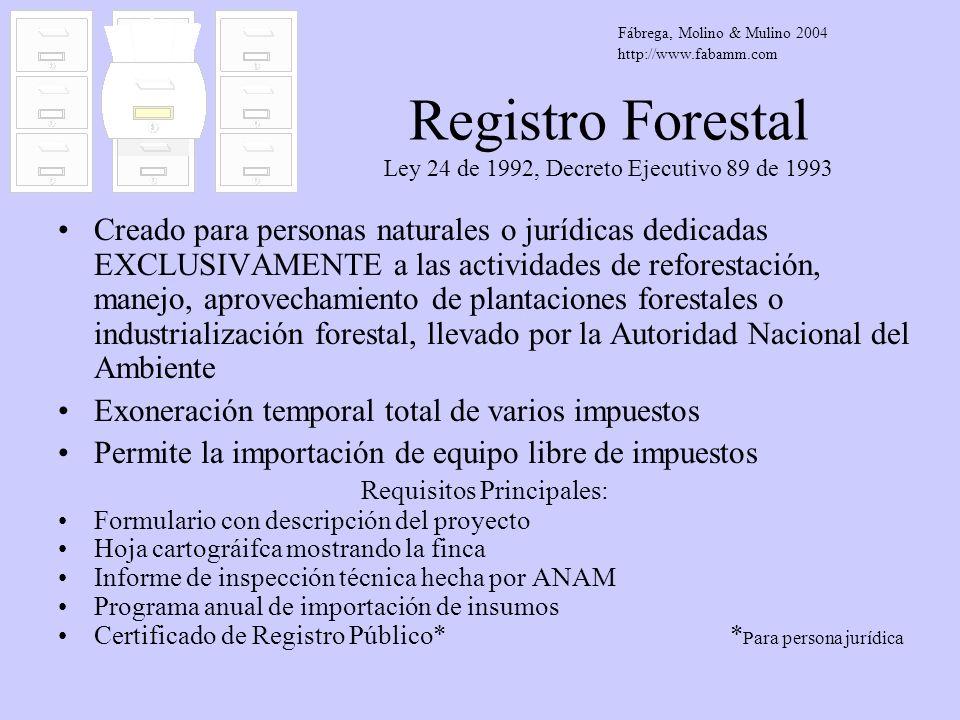 Registro Forestal Ley 24 de 1992, Decreto Ejecutivo 89 de 1993