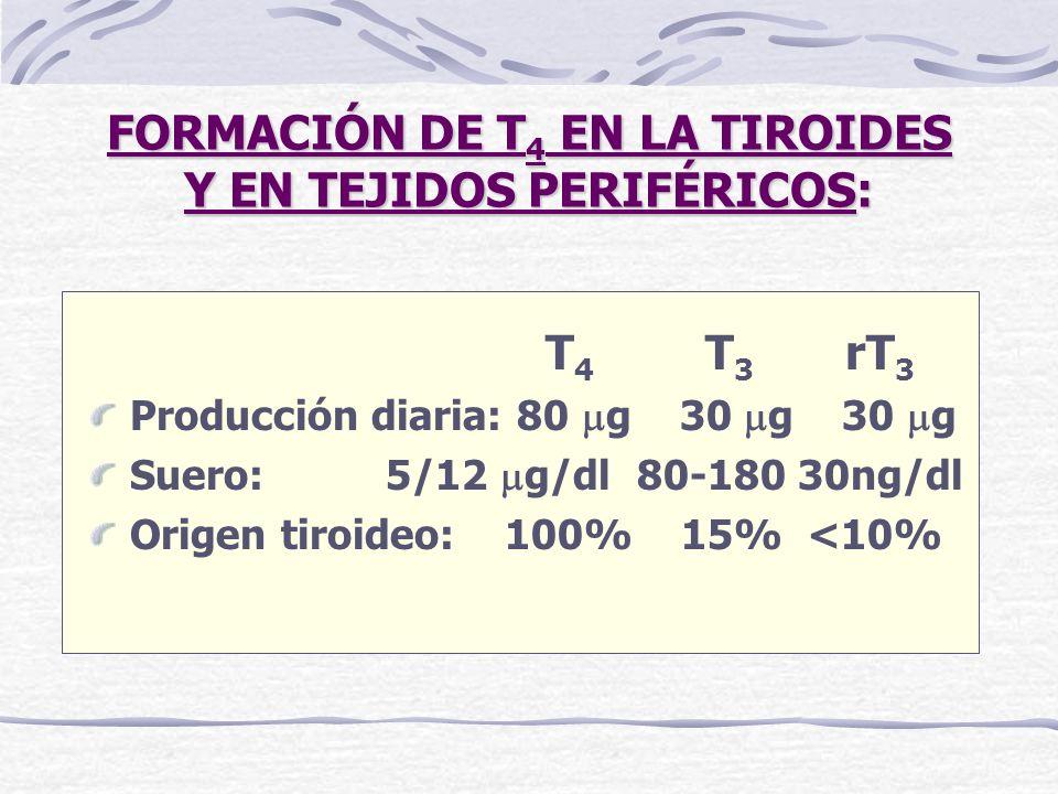 FORMACIÓN DE T4 EN LA TIROIDES Y EN TEJIDOS PERIFÉRICOS: