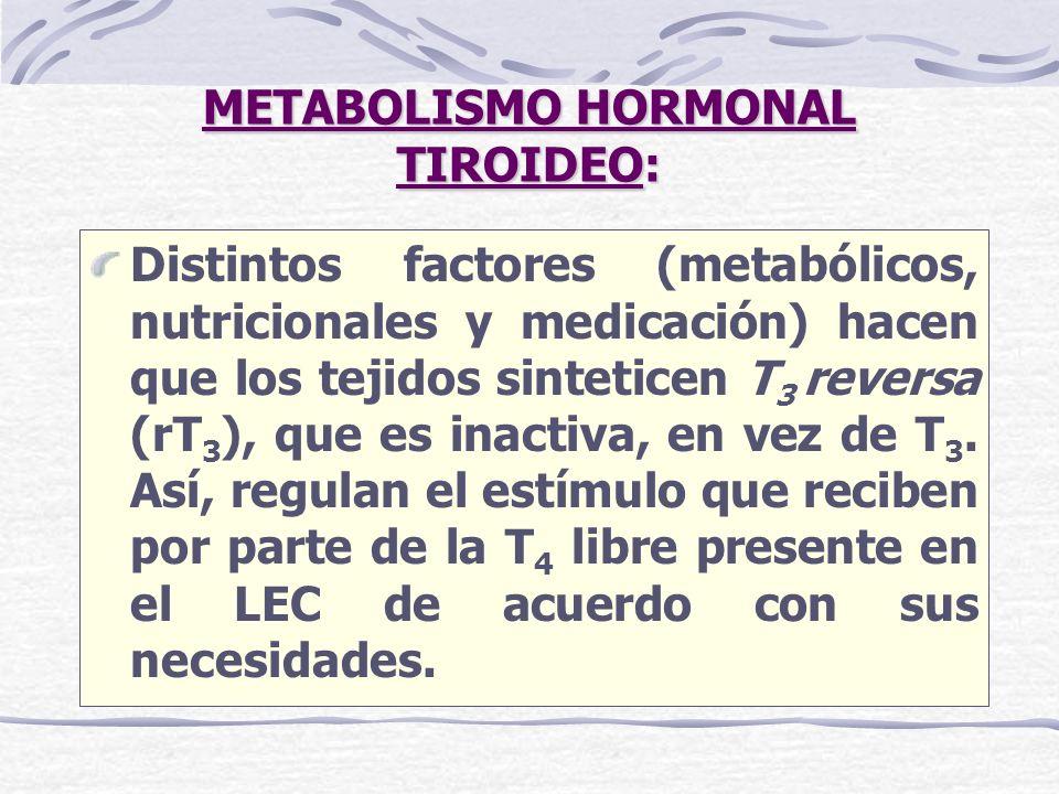 METABOLISMO HORMONAL TIROIDEO:
