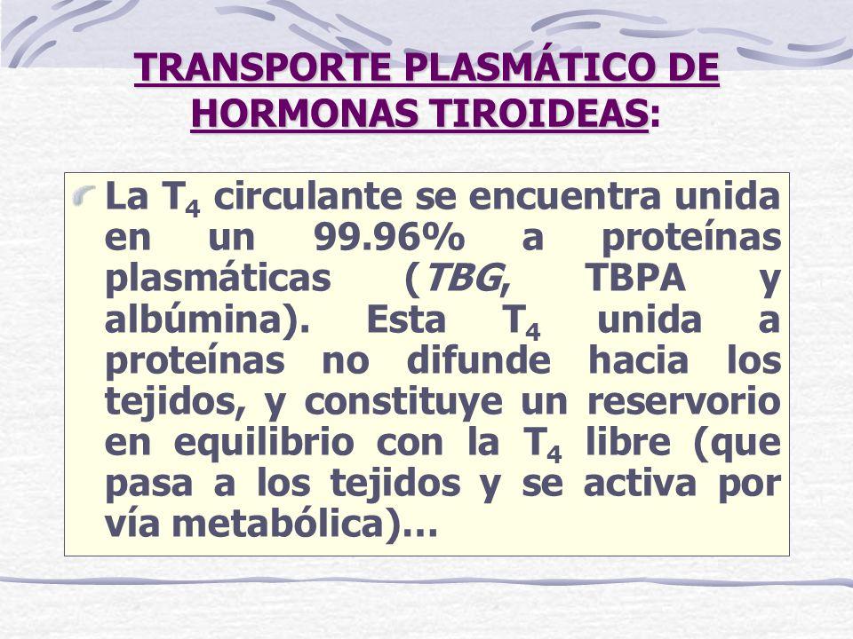 TRANSPORTE PLASMÁTICO DE HORMONAS TIROIDEAS: