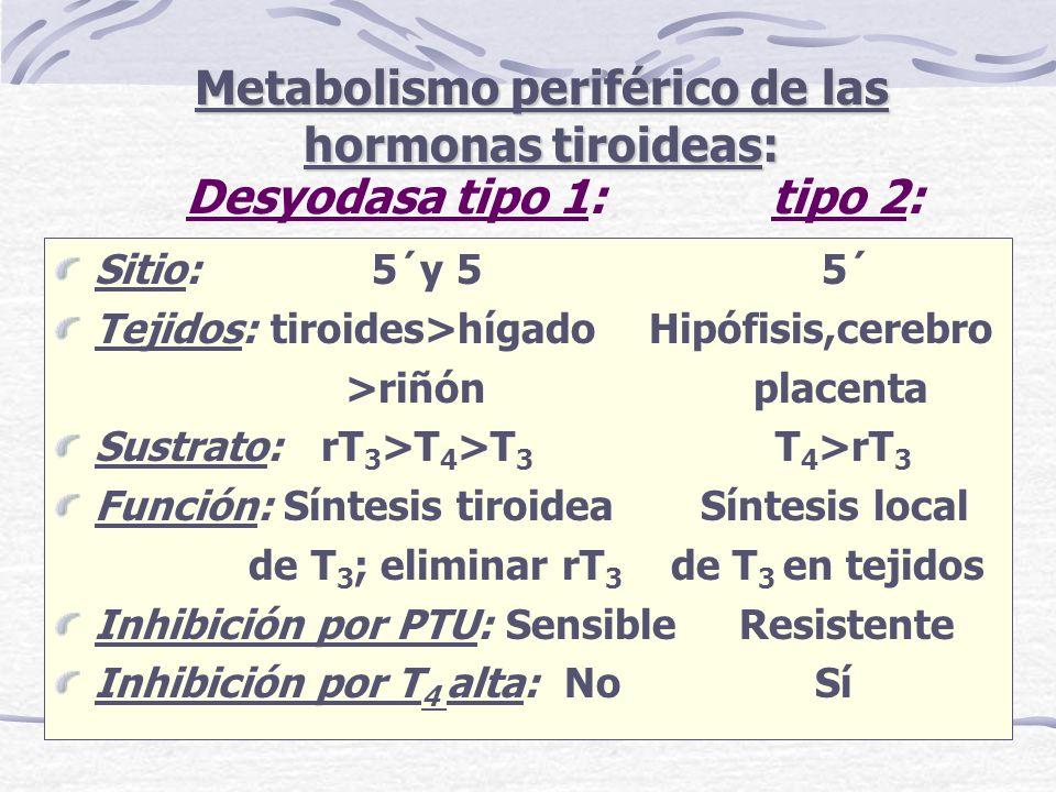 Metabolismo periférico de las hormonas tiroideas: