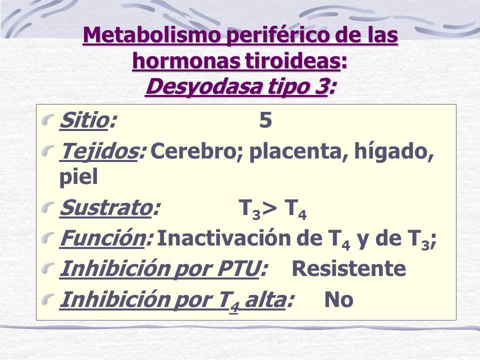 Metabolismo periférico de las hormonas tiroideas: Desyodasa tipo 3: