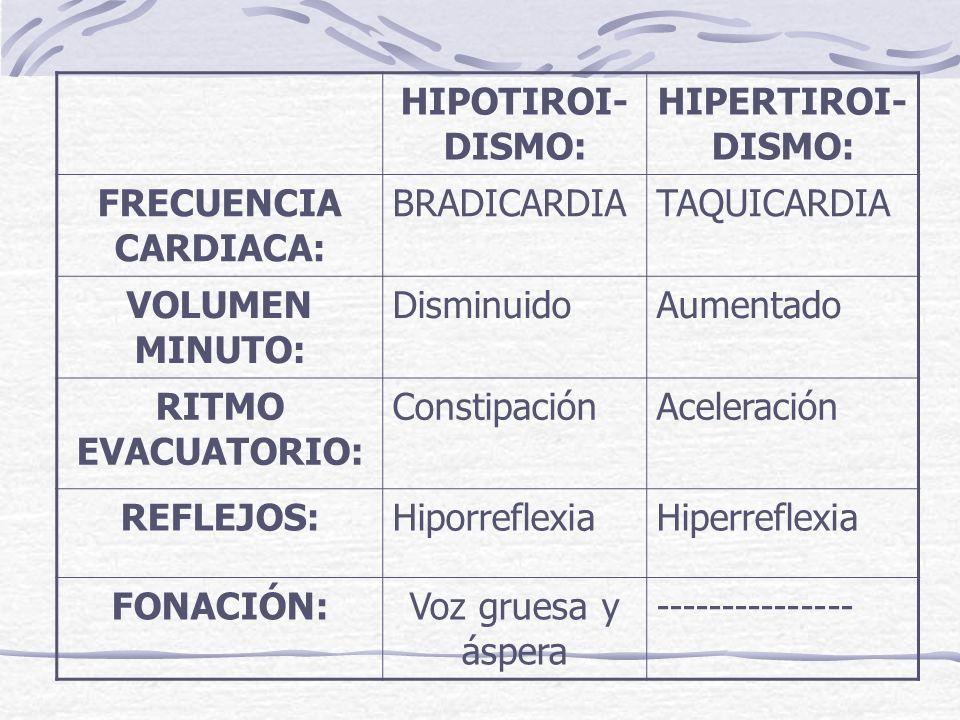 HIPOTIROI-DISMO: HIPERTIROI-DISMO: FRECUENCIA CARDIACA: BRADICARDIA. TAQUICARDIA. VOLUMEN MINUTO: