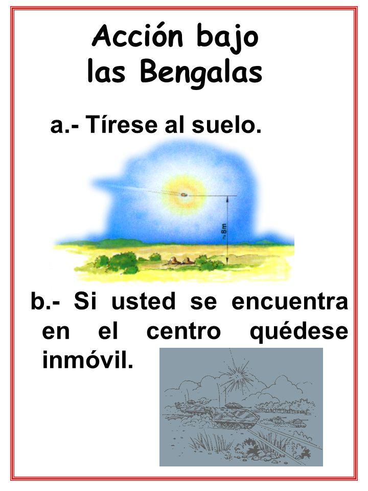 Acción bajo las Bengalas