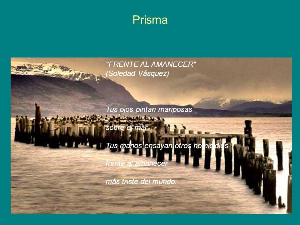 Prisma FRENTE AL AMANECER (Soledad Vásquez)