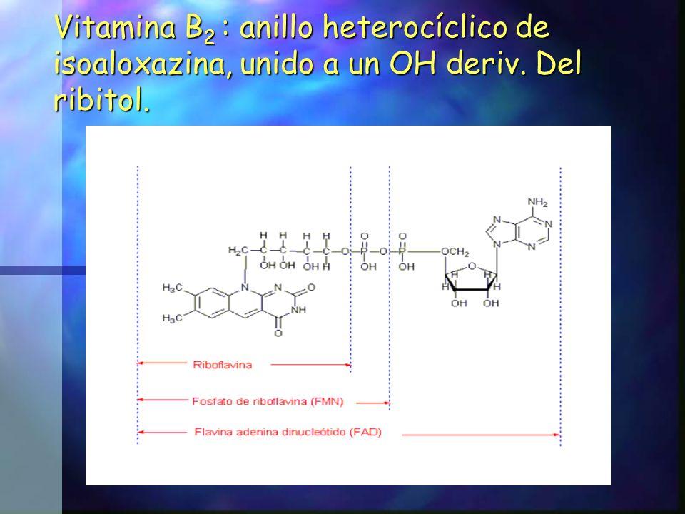 Vitamina B2 : anillo heterocíclico de isoaloxazina, unido a un OH deriv. Del ribitol.